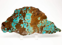#8 Mine Turquoise Slab (Stabilized) 8S5
