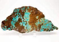#8 Mine Turquoise Slab (Stabilized) 8S5