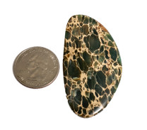 Variscite Spider Web (Nevada) 60x31x5mm 62cts V19