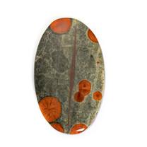 Peanut Rock(Obsidian )(Mexico)42x25x5mm  RE58c3