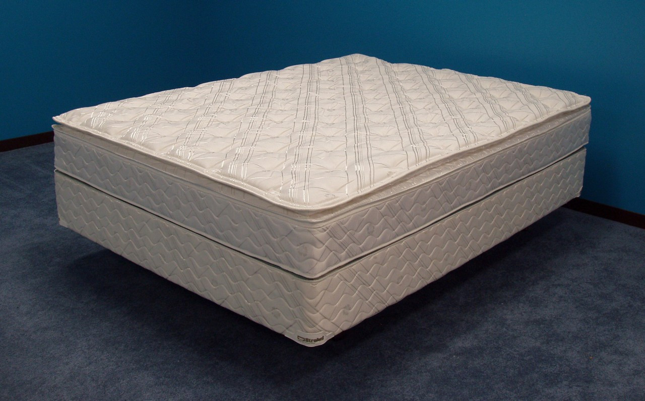 Softside Organic Waterbed Mattress Unbridled by Strobel