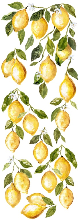IOD Colored Decor Transfer™ Lemon Drops 12x33