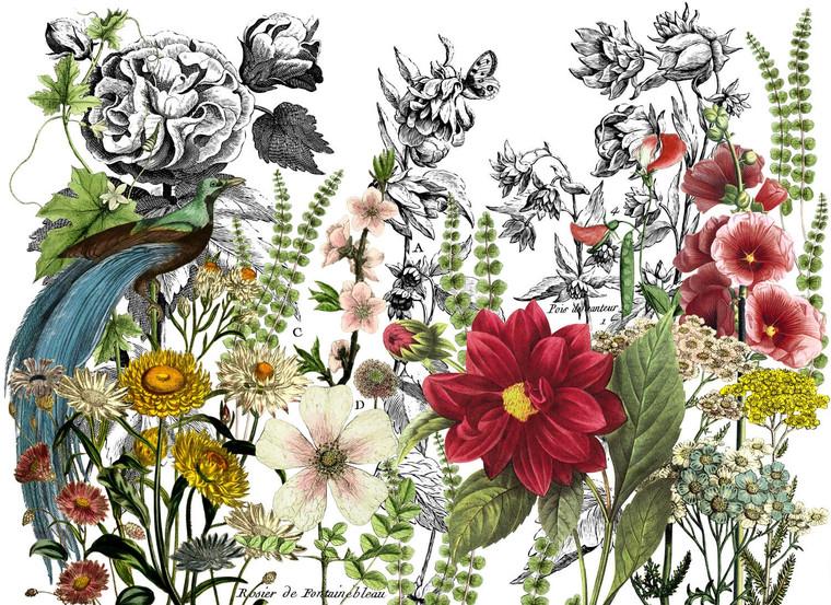 IOD Colored Decor Transfer™ Midnight Garden 24x33