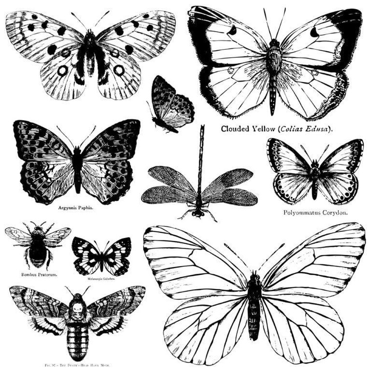 """IOD Decor Stamp™ """"Butterflies"""""""