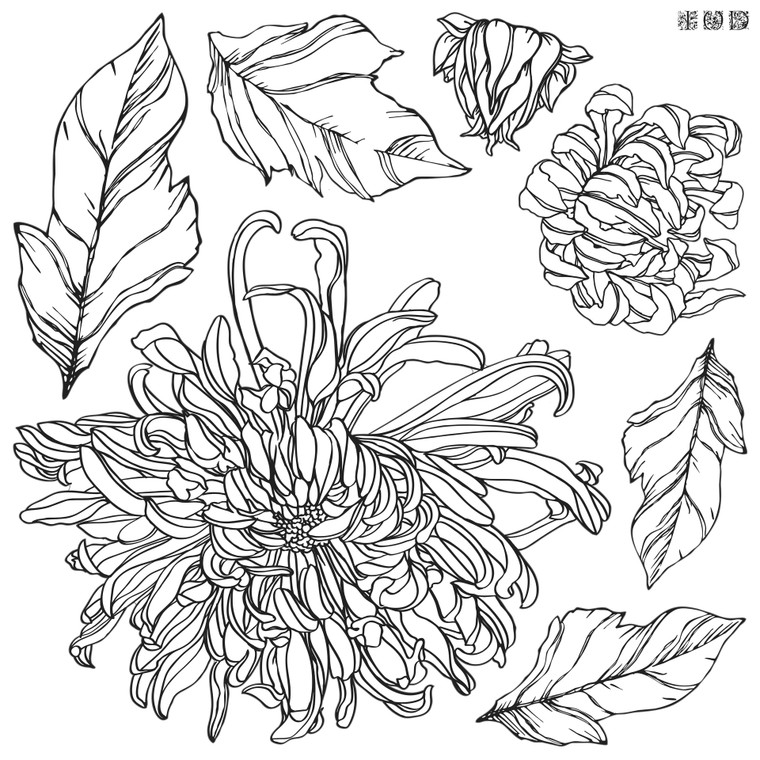 Iron Orchid Designs IOD Chrysanthemum Stamp