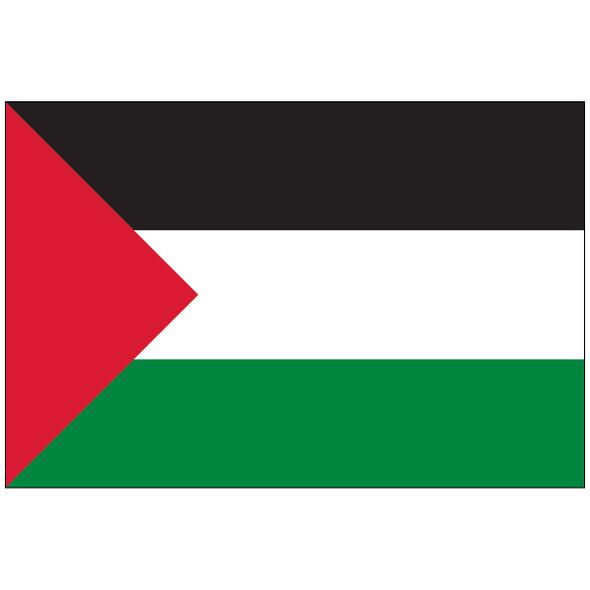 Palestine Nylon Flag