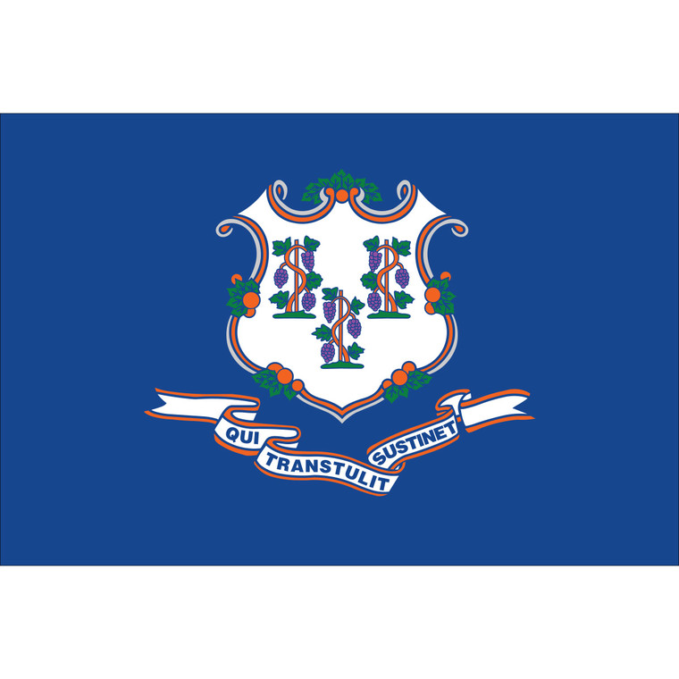 Connecticut State Flag Nylon