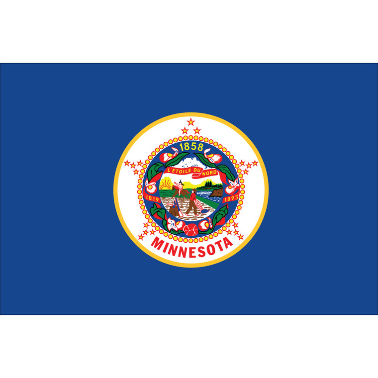Minnesota State Nylon Flag