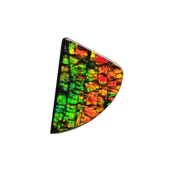 14x19 Ammolite Canada's Opal Natural Free Form 2 Color Green & Red Gem