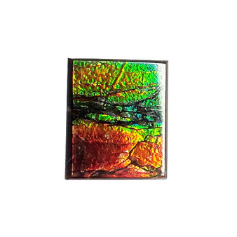 12x10 Ammolite Canada's Square Form 2 Color Green & Red Gem
