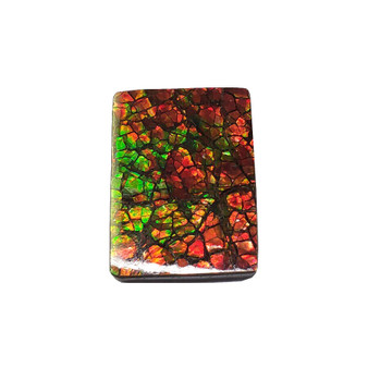 19x26 Ammolite Canada's Opal Square Shape Triplet 2 Color Green & Red Gemstone