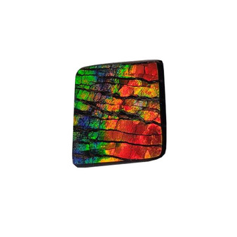 15x15 Ammolite Canada's Opal Square Shape Triplet 3 Color Green Gold Red Gemstone