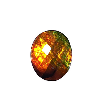 10x12 Ammolite Canada's Opal Faceted Oval Shape Triplet Orange Green Gold Gemstone