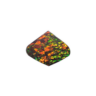 21x26 Ammolite Canada's Opal Natural Free Form 2 Color Green & Gold Gemstone