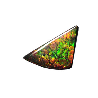 46x24 Ammolite Canada's Opal Natural Free Form 3 Color Green Red & Gold Gemstone