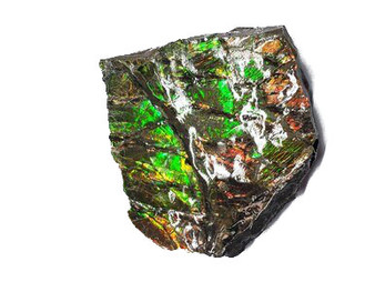 38x34 Ammolite Canada's Opal 2 Color Vibrant Green & Gold Hand Specimens