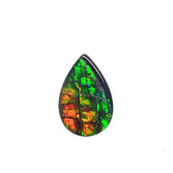 12x8 Ammolite Canada's Pear Form 2 Color Orange & Green Gem