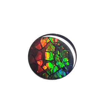 10x10 Ammolite Canada's Round Form 3 Color Red Gold & Green Gem