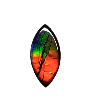 13x6 Ammolite Canada's Opal Marquis Form 3 Color Bright Gold Red & Green Gem