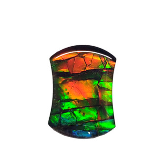 14x10 Ammolite Canada's Opal Natural Free Form 3 Color Gold Orange & Green Gem