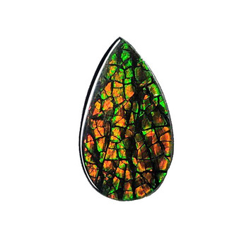 22x14 Ammolite Canada's Pear Shape Triplet 2 Color Green & Orange Gem 276