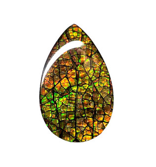 22x14 Ammolite Canada's Opal Triplet Pear Shape 2 Color Green & Orange Gem 277