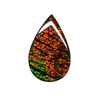 22x14 Ammolite Canada's Opal Triplet Pear Shape 2 Color Green & Orange Gem 278
