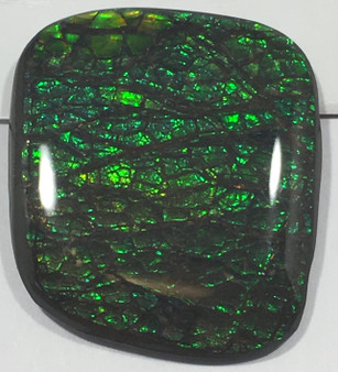 Rare Canadian Ammolite, Free Form Square, Native Buffalo Stone, Green Cabochon Gemstone Loose, Clear Coated. You Tube Video Available