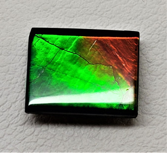 8 x 10 Ammolite Canada's Opal Rectangular Deep Green with hints of Red & Yellow
