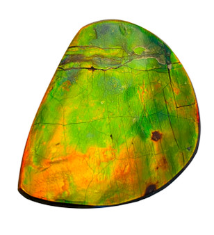 47x49  Free Form with Brilliant Orange and Green Colors.