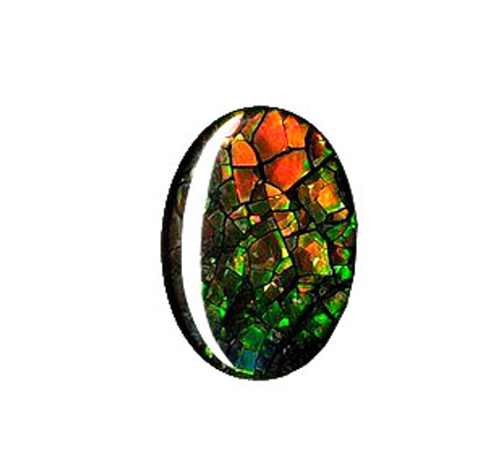 12x16 Ammolite Canada's Opal Oval Shape Triplet 2 Color Green & Gold Gem