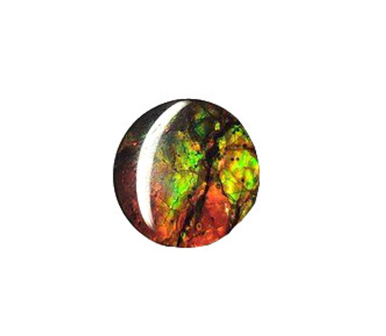 14x14 Ammolite Canada's Opal Round Shape Triplet 2 Color Red & Green