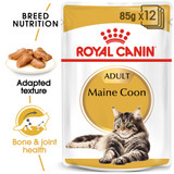 Royal Canin Maine Coon Adult Wet Food