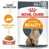 Royal Canin Intense Beauty in Gravy Cat Food