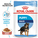 Royal Canin Maxi Puppy Gravy Dog Food