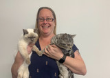 Pet Talk: Cat litter tips from our cat fanatic