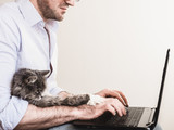 Your most Googled cat questions answered