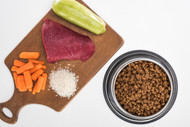 The Differences Between Dry, Wet, Dehydrated, and Raw Nutrition