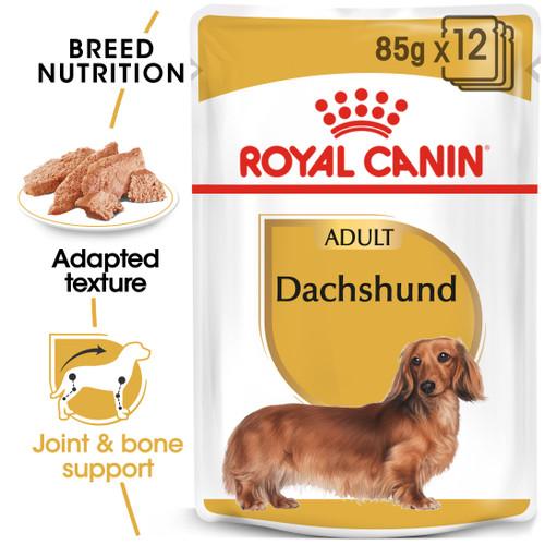Royal Canin Dachshund Wet Dog Food