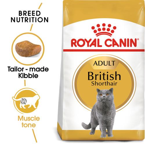 Royal Canin British Shorthair Adult Dry Cat Food