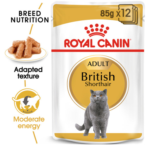 Royal Canin British Shorthair Adult Wet Food