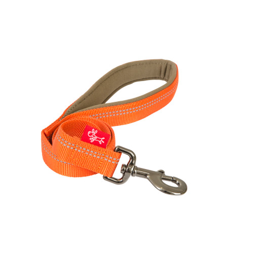 Yours Droolly Reflective Lead