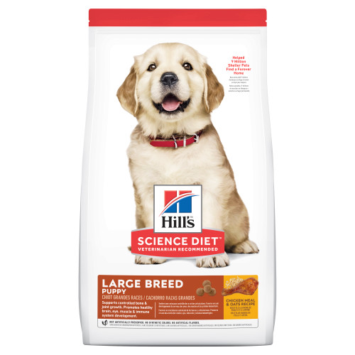 Hill's Science Diet Puppy Large Breed Dry Food