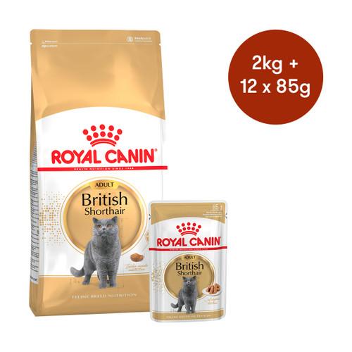 Royal Canin British Shorthair Adult Dry + Wet Cat Food Bundle