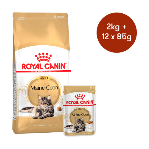 Royal Canin Maine Coon Adult Dry + Wet Cat Food Bundle