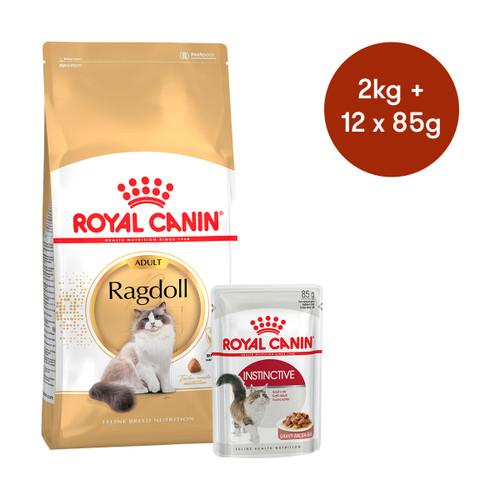 Royal Canin Ragdoll Adult Dry + Wet Cat Food Bundle