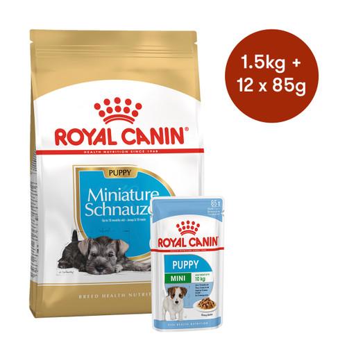 Royal Canin Miniature Schnauzer Puppy Dry + Wet Dog Food Bundle