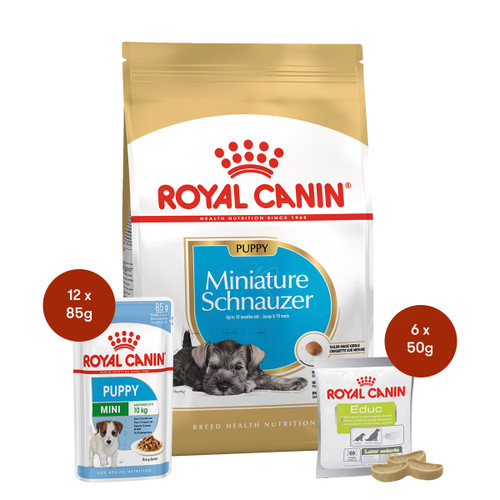 Royal Canin Miniature Schnauzer Puppy Food & Treats Bundle