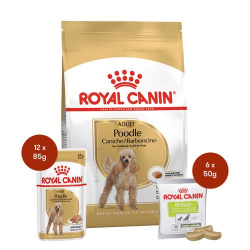 Royal Canin Poodle Adult Food & Treats Bundle