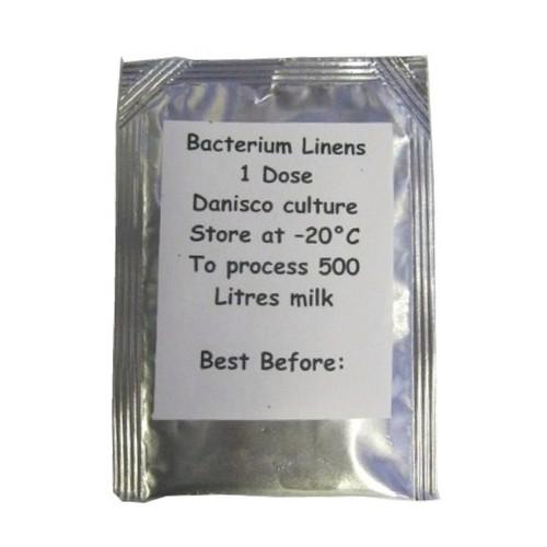 Cheese Culture - Bacterium Linens 15g Sachet